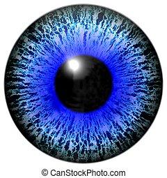 Isolated illustration of blue eye