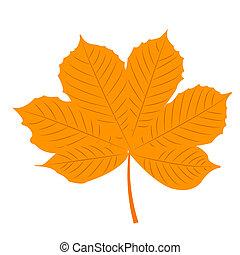 Isolated illustration of yellow autumn chestnut leaf