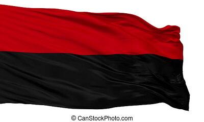 Isolated Jauregui city flag, Venezuela - Jauregui flag, city...