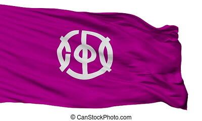 Isolated Joyo city flag, prefecture Kyoto, Japan - Joyo flag...