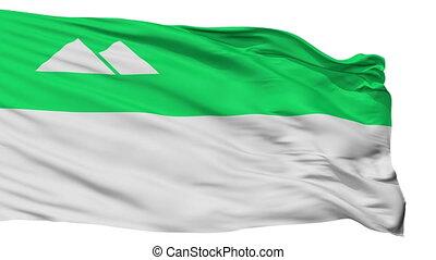Isolated Kurgan city flag, Russia - Kurgan flag, city of...
