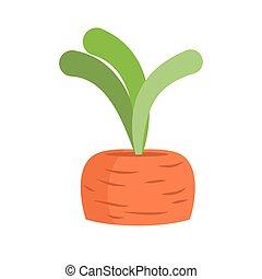 isolated., légumes, carottes, fond, croissant, frais, blanc