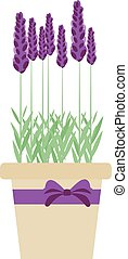 Isolated lavender flowers in pot. Vector illustration