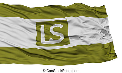 Isolated Lees Summit City Flag, United States of America -...