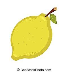 Isolated lemon illustration - Lemon isolated on white ...