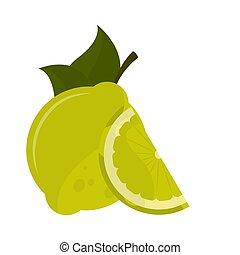 Isolated lemon image on a white background - Vector