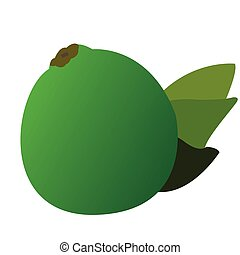 Isolated lemon with some leaves, Vector illustration