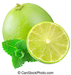 Isolated lime on white background with clipping path