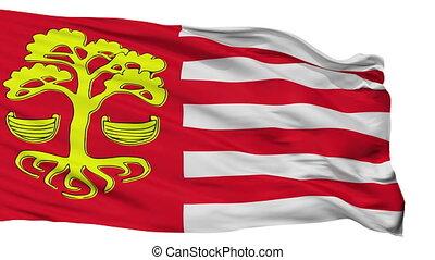 Isolated Loksa city flag, Estonia - Loksa flag, city of...
