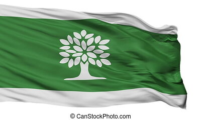 Isolated London Ontario city flag, Canada - London Ontario...
