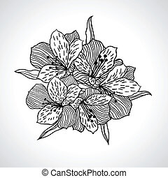 isolated., makro, blomma, svart, orkidé