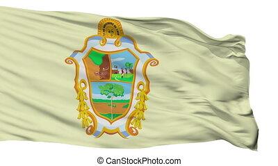 Isolated Manaus city flag, Brasil - Manaus flag, city of...