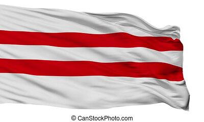 Isolated Moisakula city flag, Estonia - Moisakula flag, city...