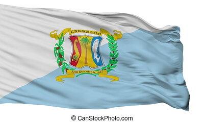 Isolated Municipio Bermudez city flag, Venezuela - Municipio...