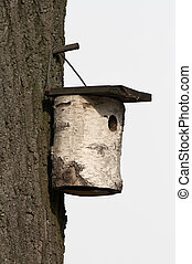 nest box - Isolated nest box, made from birch bole