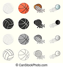 Isolated object of ball and soccer logo. Set of ball and basketball stock vector illustration.