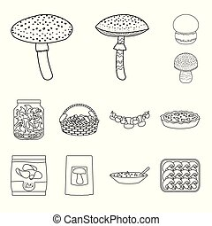 Isolated object of forest and fresh symbol. Set of forest and nature vector icon for stock.