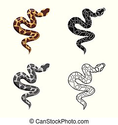 Isolated object of serpent and venomous icon. Graphic of serpent and skin vector icon for stock.