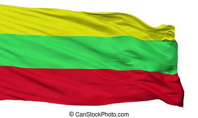 Isolated Ocumare del Tuy city flag, Venezuela - Ocumare del...