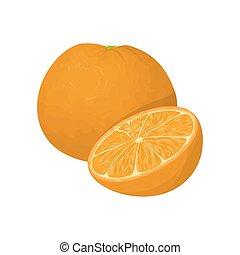 Isolated orange fruit.
