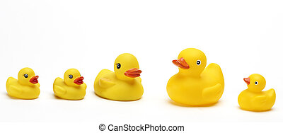 isolated photo of some funny yellow ducks