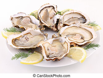 plate of opened oyster on white background