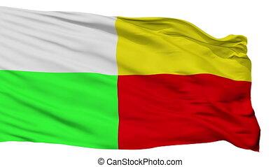 Isolated Plzen city flag, Czech Republic - Plzen flag, city...