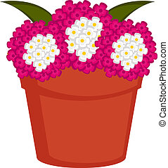 Isolated pot with verbena flowers. Vector illustration design