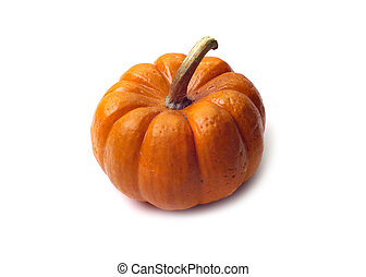 Isolated Pumpkin - Single pumpkin isolated white background