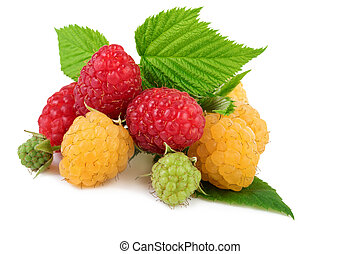 Isolated raspberry. Yellow and red raspberries with leaves isolated on white