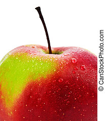 isolated red apple close up