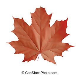 Isolated red leaf. Vector illustration