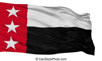 Isolated Republic of the Rio Grande city flag, USA -...