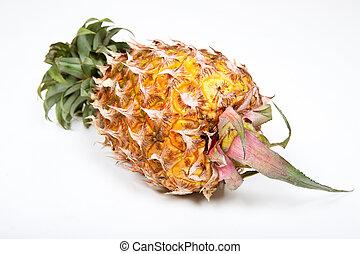 Isolated ripened fresh pineapple