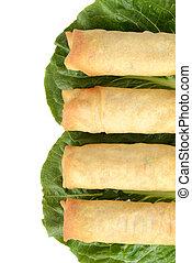 Row of spring rolls
