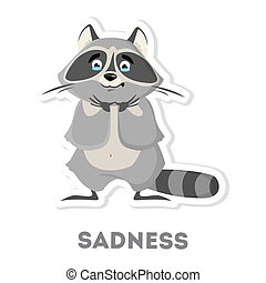 Isolated sad raccoon.