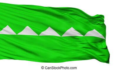 Isolated Salinas city flag, Puerto Rico - Salinas flag, city...