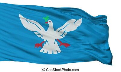 Isolated Salvador city flag, Brasil - Salvador flag, city of...