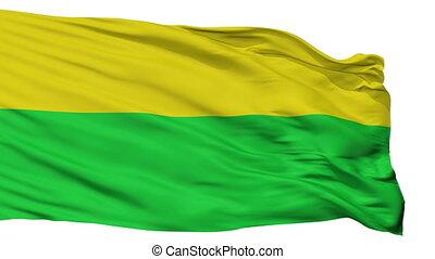 Isolated San Carlos city flag, Costa Rica - San Carlos flag,...