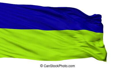 Isolated San Joaquin city flag, Venezuela - San Joaquin...