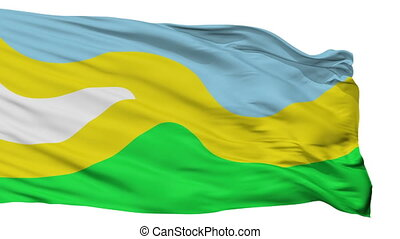 Isolated San Jose del Guaviare city flag, Colombia - San...