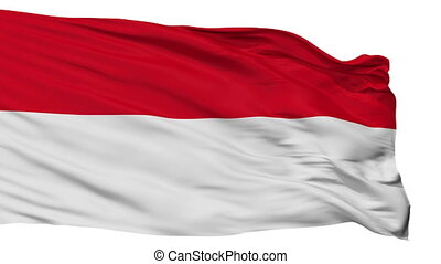 Isolated San Ramon city flag, Costa Rica - San Ramon flag,...