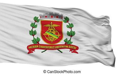 Isolated Santos city flag, Brasil - Santos flag, city of...