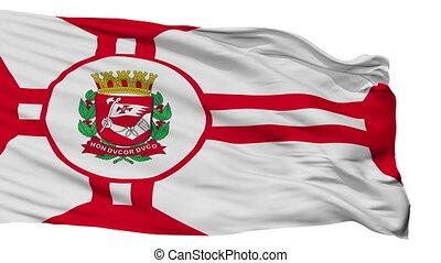 Isolated Sao Paulo city flag, Brasil - Sao Paulo flag, city...