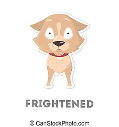 Isolated scared dog.