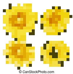 Isolated set of flowers in yellow