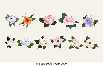 isolated set of flowers with leaves painting vector design