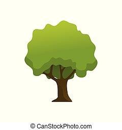 Isolated Shady Leaves Tree Plant Illustration - Isolated...