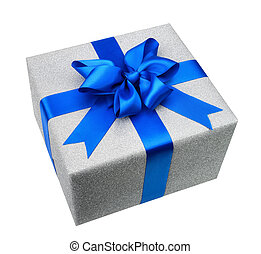Isolated silver gift box with elegant blue bow