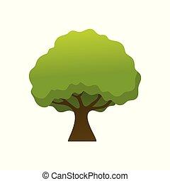 Isolated Simple Shady Tree Plant Illustration - Isolated...